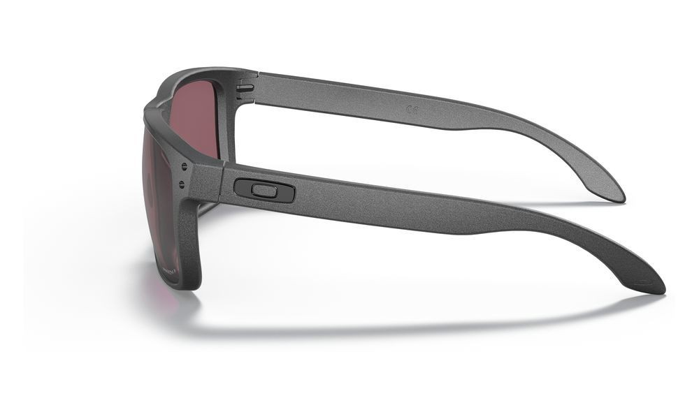 Holbrook™ Steel Collection steel/prizm daily polarized
